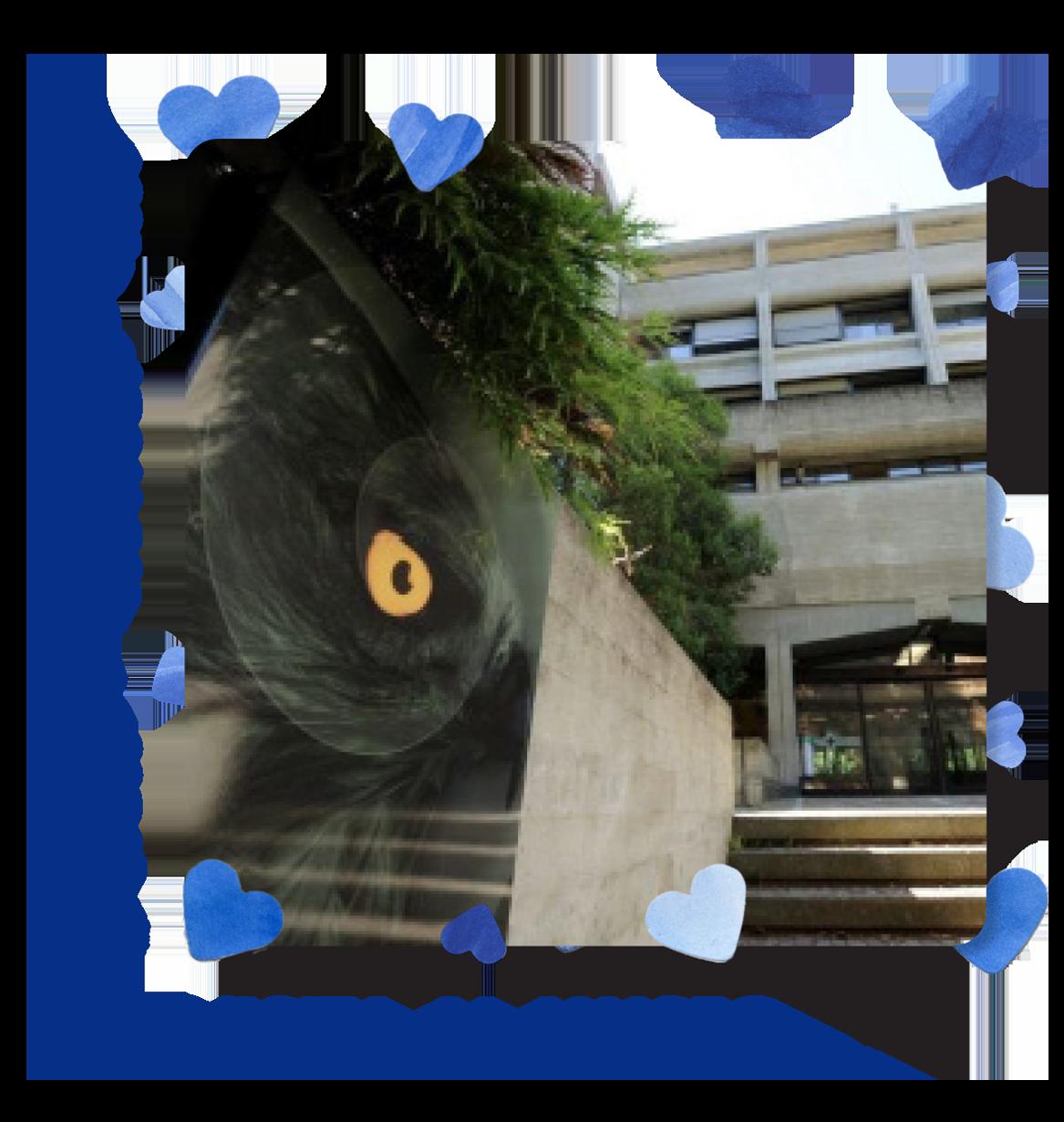 visita_al_museo